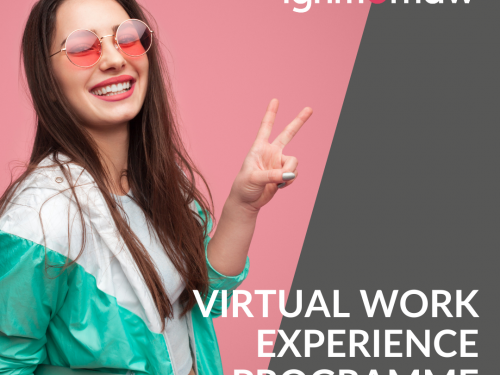 Ignition Law Virtual Work Experience